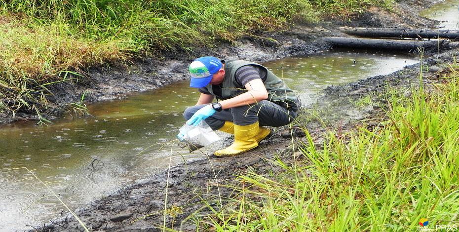 Toma de muestras de suelo en derrame de hidrocarburo. (Orellana. 2015)